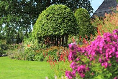 8 - Palusalu Aiad OÜ aia planeerimine, aia hooldus, aiakujunduse kursused