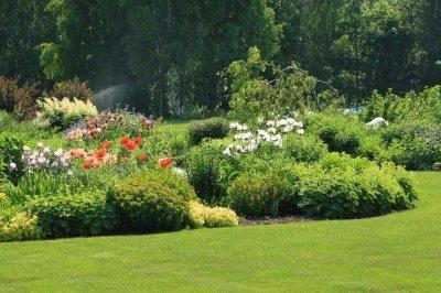 9 - Palusalu Aiad OÜ aia planeerimine, aia hooldus, aiakujunduse kursused