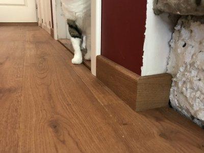 5 - Tammepuitust põrandaliist 16x70 mm
