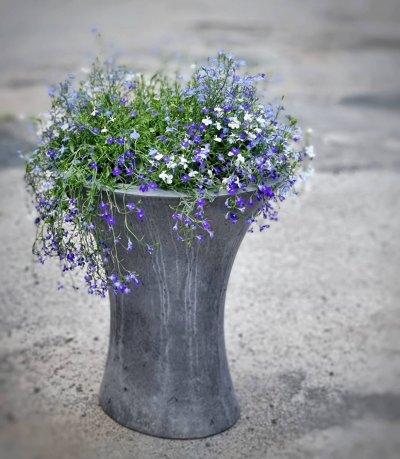 Betoonist lillepott