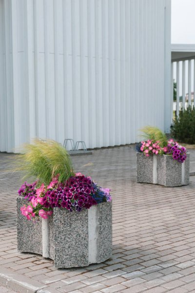 Pesubetoonist lillepott