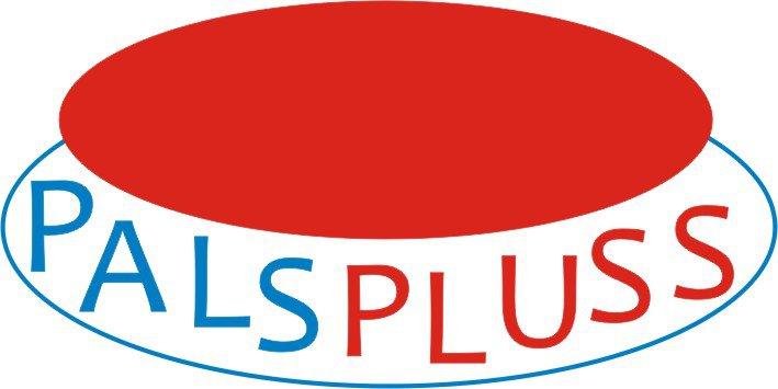 Logo - PALSPLUSS OÜ gaasikütte süsteemide ehitus, päikesepaneelid