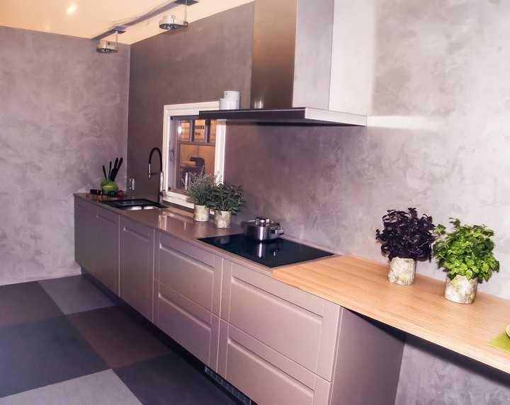 Köögimööbli tootja Arens, kivist töötasapind Kivisepad, kunst-mitsetaimed Shishi, rasvakogur Falmec