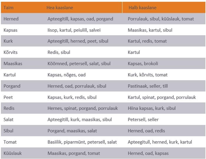 Vaata tabelist, millised taimed sobivad kokku ja millised mitte!