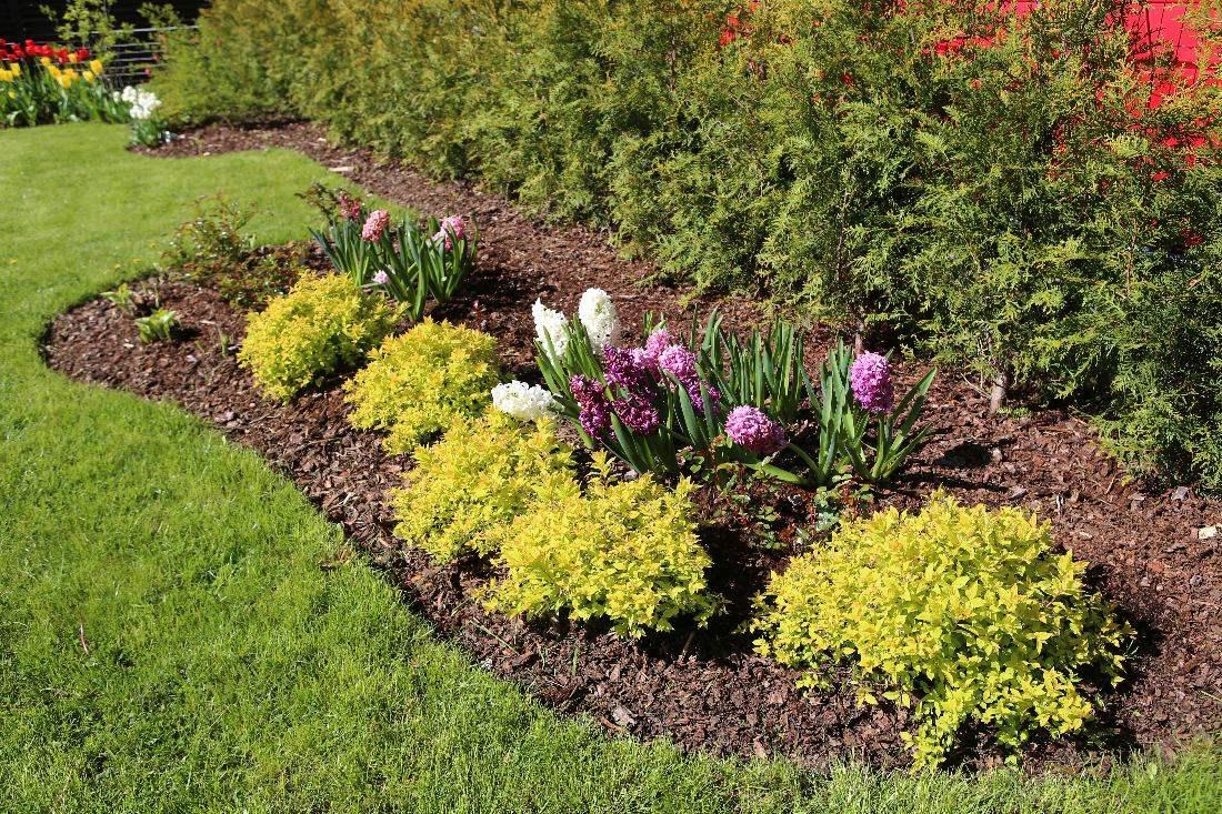 Selle asemel, et istutada murusse uusi taimi, võiks rajada ühe suurema piiritletud ala.