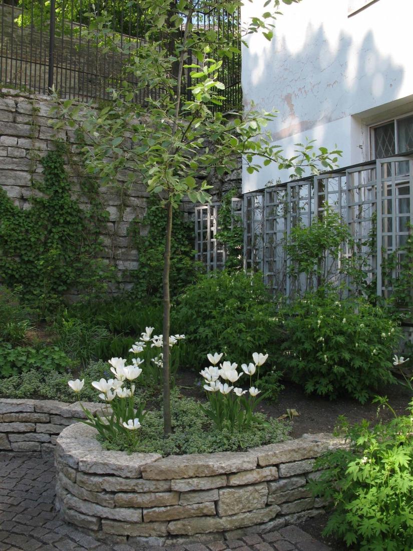 Varjuline aed - Kivisilla OÜ