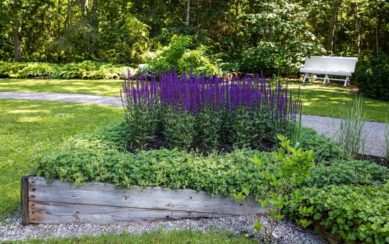 Aasta kauneima aia rajajad on Lydia ja Vootele Veeris Pärnumaalt.