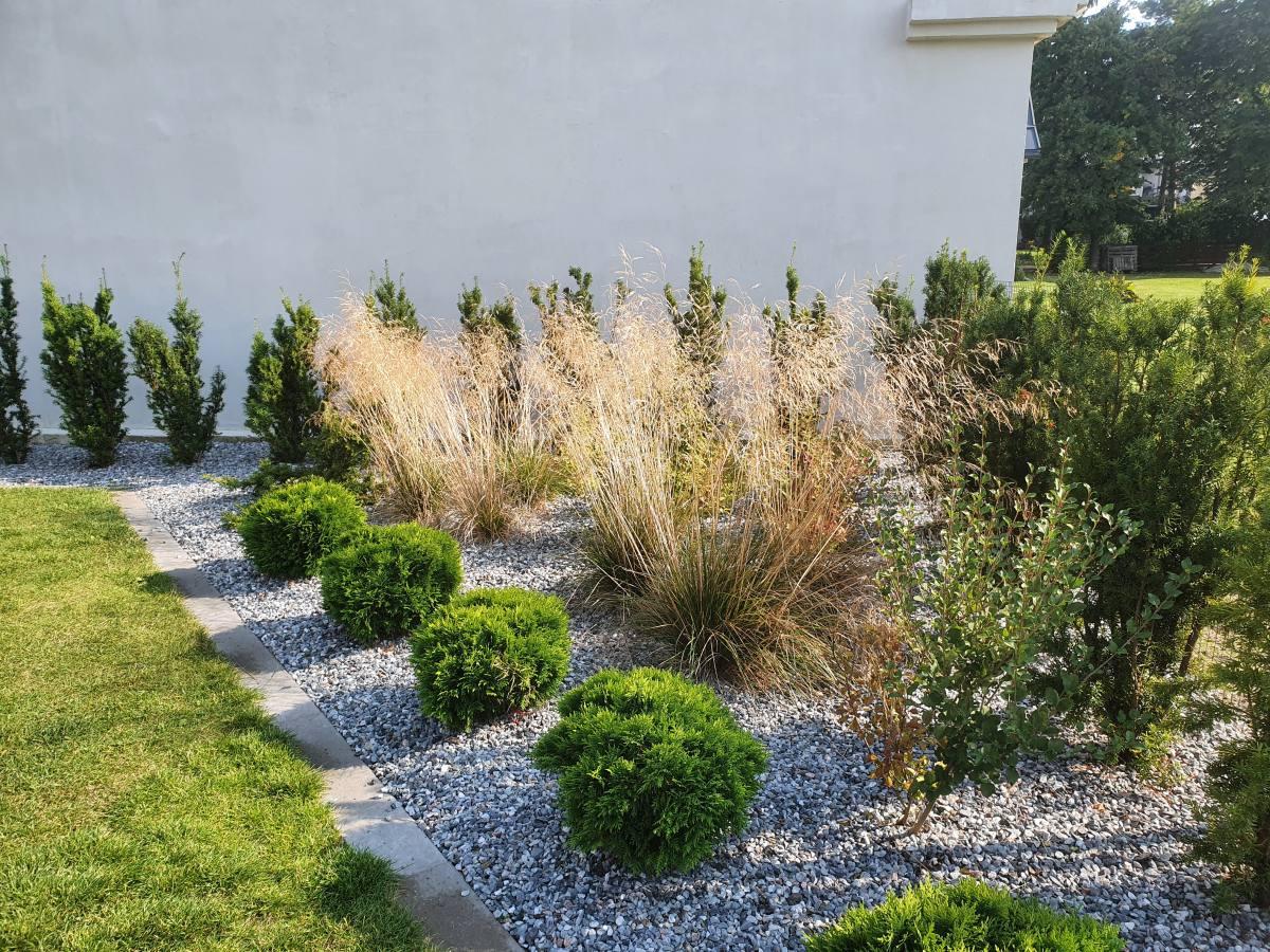 Vähese hooldusega peenar, mida kaunistavad okaspuud, kõrrelised ja põõsad.