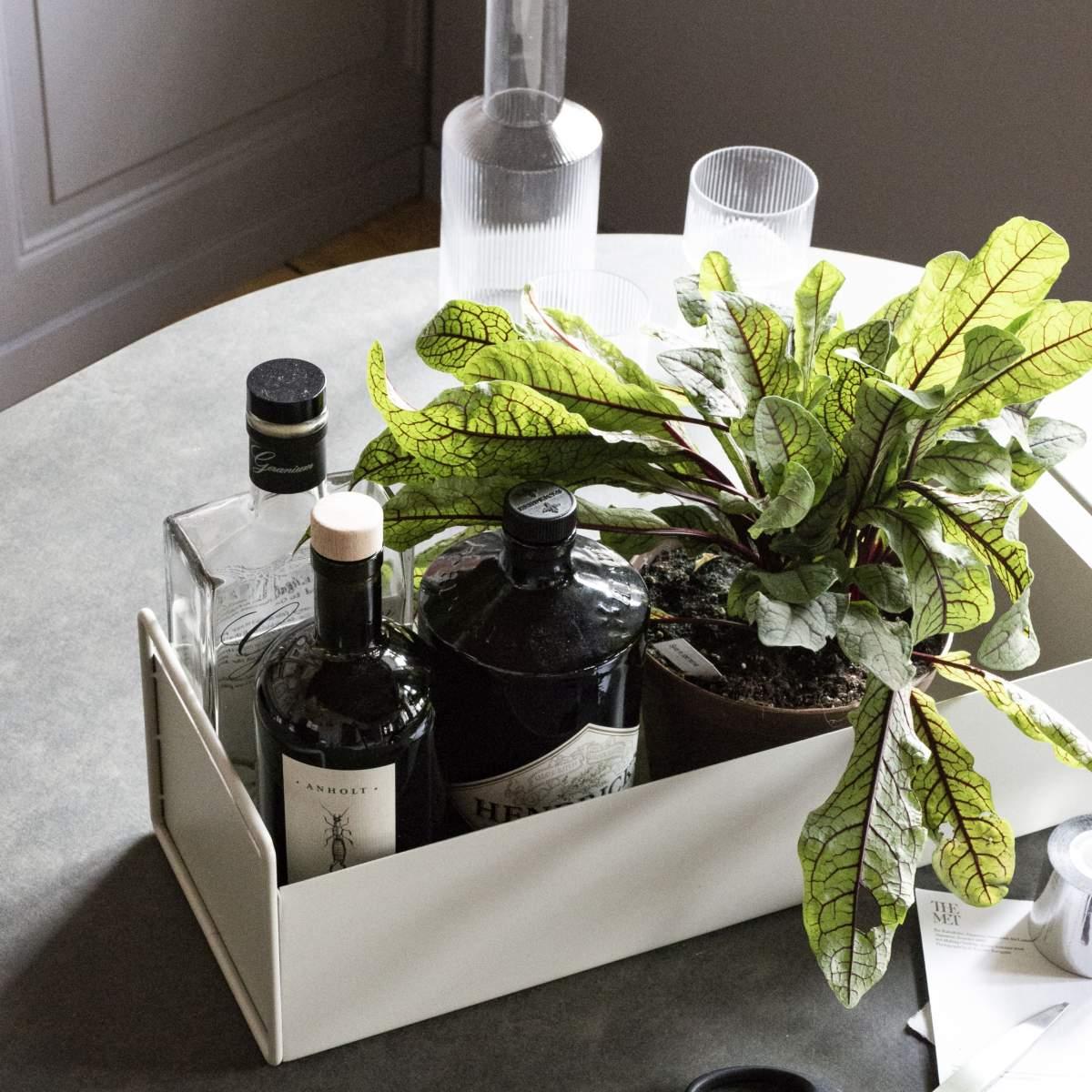 Plant Box Small taimekast. Tootja: ferm LIVING