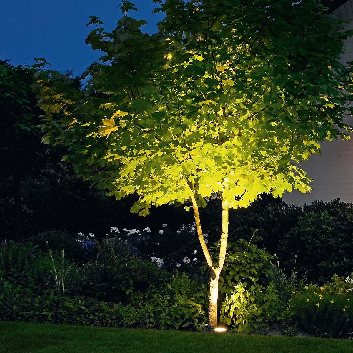 Puu väljavalgustamine - Bega 84084 recessed Floor Light LED