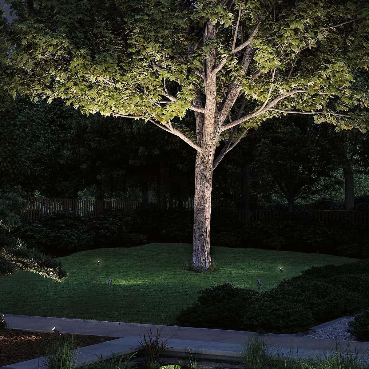 Erikülgedest valgusatud puu - Paulmann Plug & Shine Radon Ground Spike Spotlights LED