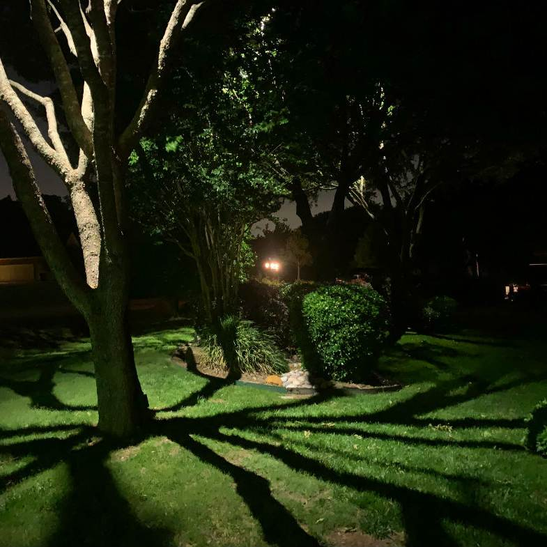 Moonlight efekt - dallaslandscapelighting.net